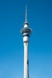 圣诞节skytower结构树 免版税库存照片
