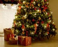 圣诞节Tree.â关闭圣诞树 库存图片