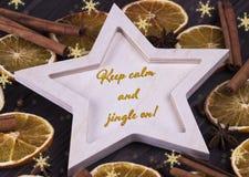 圣诞节Xmas新年假日与木星cinnamone星anice干桔子雪花的贺卡和文本保持安静  库存图片