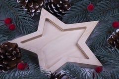 圣诞节Xmas新年假日与空五的贺卡概念指向了星冷杉在白色背景,空间f的分支锥体 免版税库存图片