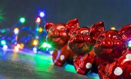 圣诞装饰,猪 库存照片