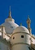 圣路易大教堂,迦太基圆顶  库存图片