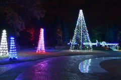 圣路易斯,密苏里,美国- 2017年11月22日:假日光在密苏里植物园里 免版税库存照片