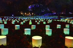 圣路易斯,密苏里,美国- 2017年11月22日:密苏里植物园2017庭院焕发 免版税库存照片