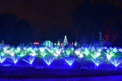 圣路易斯,密苏里,美国- 2017年11月22日:庭院焕发的密苏里植物园 免版税库存图片