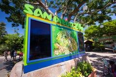 圣迭戈动物园 库存图片