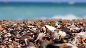 圣迭戈海滩 图库摄影