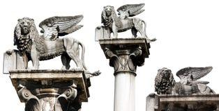 圣马克飞过的狮子在白的维罗纳意大利隔绝了 免版税图库摄影