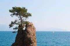 圣马尔盖里塔利古雷,热那亚,利古里亚,意大利,意大利语里维埃拉,欧洲 图库摄影