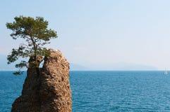 圣马尔盖里塔利古雷,热那亚,利古里亚,意大利,意大利语里维埃拉,欧洲 免版税库存照片