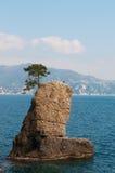 圣马尔盖里塔利古雷,热那亚,利古里亚,意大利,意大利语里维埃拉,欧洲 库存照片