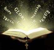 圣经不可思议的光芒  皇族释放例证