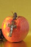 圣经伊娃的罪孽红色苹果计算机 库存图片
