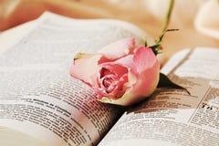 圣经和玫瑰 免版税图库摄影