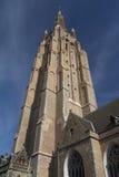 圣洁救主大教堂的塔在布鲁日(比利时) 免版税库存照片