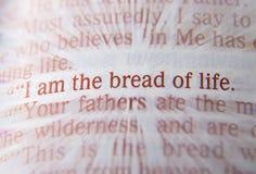 圣经文本-我是人生的约翰6:48面包  免版税图库摄影
