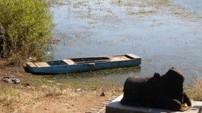 圣洁湖边 库存照片