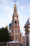 圣洁王子弗拉基米尔的大教堂 免版税库存照片