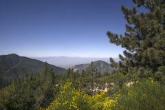 圣贝纳迪诺国家森林,加州,在Big Bear湖附近的美国 库存图片