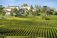 圣Emilion,红葡萄酒葡萄园Wineyards  免版税库存照片