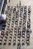 圣Marco广场的游人在一个在露天的咖啡馆休息 免版税库存照片