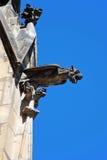 圣Vitus大教堂面貌古怪的人  免版税库存图片