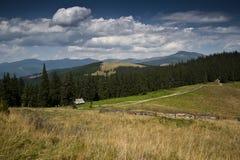 在一个亚高山带草甸的Shielings一座山的倾斜的在喀尔巴阡山脉的 免版税库存照片