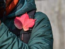 在一个人的肩膀的秋天叶子 免版税库存图片