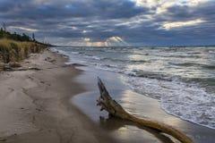 在一个休伦湖海滩的漂流木头在多云天空下 库存照片