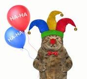在一个供人潮笑者帽子的猫有气球的2 免版税库存照片