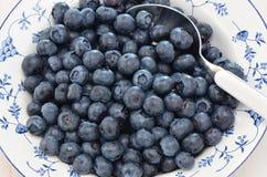 在一个俏丽的盘的蓝莓 免版税库存照片