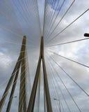在一个修改过的爱好者设计的缆绳在缆绳停留桥梁 免版税库存图片
