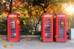 在一个公园前面的经典红色电话亭在伦敦在秋天时间 免版税库存照片