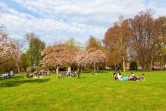 在一个公园的人们在马斯特里赫特在春天 免版税库存照片