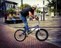 在一个公园骑自行车跃迁车手在市Puyo在厄瓜多尔 免版税图库摄影