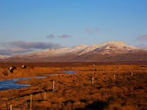 在一个典型的冰岛风景的看法 免版税库存照片