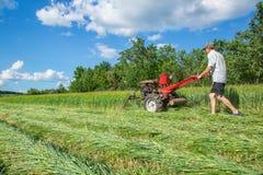在一个农业农场的工作 免版税库存照片