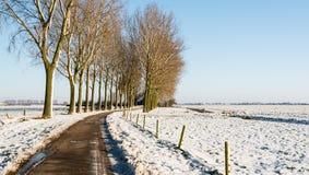 在一个农业冬天风景的弯曲的乡下公路 库存照片