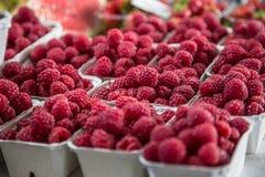 在一个农厂市场上的莓在城市 水果和蔬菜在农夫市场上 库存图片