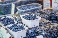 在一个农厂市场上的蓝莓在城市 水果和蔬菜在农夫市场上 库存照片