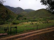 在一个农场的一条湿土路在一个雨天 库存照片