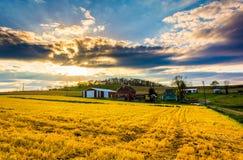 在一个农场的日落在农村约克县,宾夕法尼亚 库存图片
