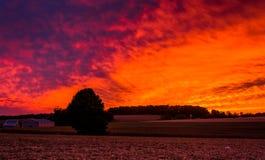 在一个农场的日落在农村约克县,宾夕法尼亚 免版税库存图片