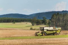 在一个农场的联合收割机收获成熟麦子在捷克 苹果庭院地面收获成熟时间结构树 五谷的耕种在一个农业农场的 图库摄影