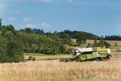 在一个农场的联合收割机收获成熟麦子在捷克 苹果庭院地面收获成熟时间结构树 五谷的耕种在一个农业农场的 免版税库存图片