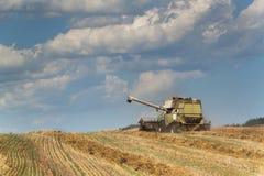 在一个农场的联合收割机收获成熟麦子在捷克 苹果庭院地面收获成熟时间结构树 五谷的耕种在一个农业农场的 免版税库存照片