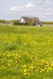 在一个农村房子,更低的莱茵河附近的春天草甸在德国 库存照片