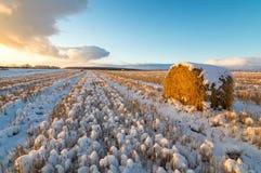 在一个农村领域的日落与干草和雪,俄罗斯,乌拉尔 免版税图库摄影