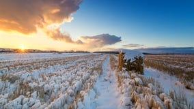 在一个农村领域的日落与干草和雪,俄罗斯,乌拉尔 库存图片