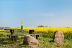 在一个农村风景的野餐区 库存照片